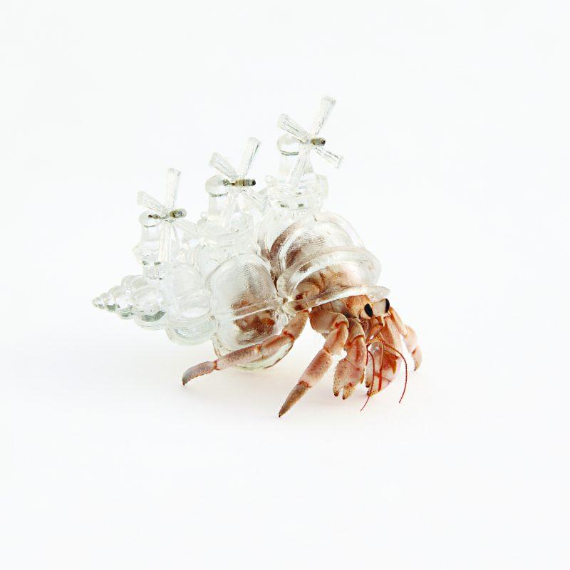 20130813_SP10_crustaceo3 holanda. Imagen Por: This hermit crab shell is modeled on the windmills of Zaanse Schans, Netherlands. The work belongs to Aki Inomata