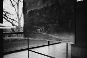 mauro restiffe – glass house #3