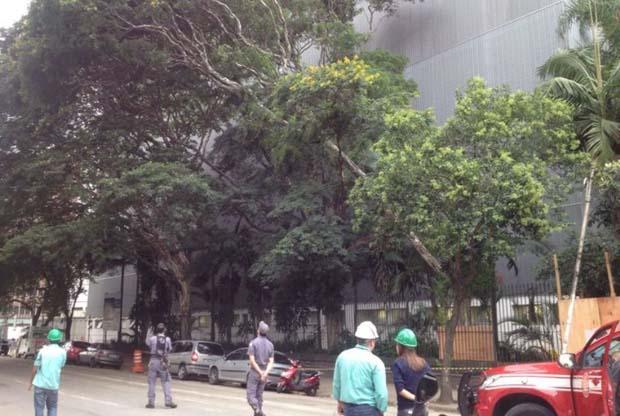 Sem trabalho de poda, árvores caem na capital paulista / Elisa Klabunde/Portal da Band/Arquivo
