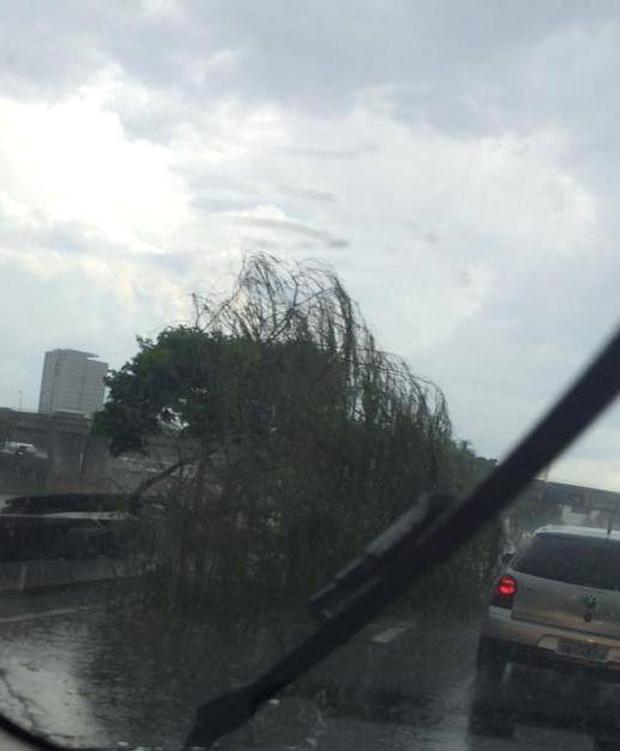Chuva também atingiu a Marginal Tietê | João/Ouvinte Rádio Sulamérica Trânsito
