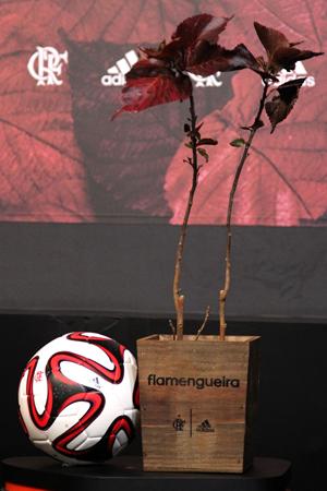 A Acalypha wilkesiana serviu de inspiração para os detalhes da camisa do Fla | Gilvan de Souza / Flamengo
