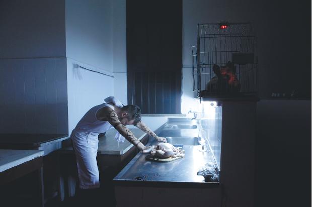 Cena de 'A Arte de Matar Galinhas', da Companhia Tribo | Marcio Lima/Divulgação