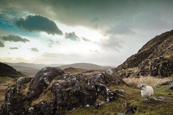 Kerry - Categoria: Cidade Verde | Marta Rondan/Ireland