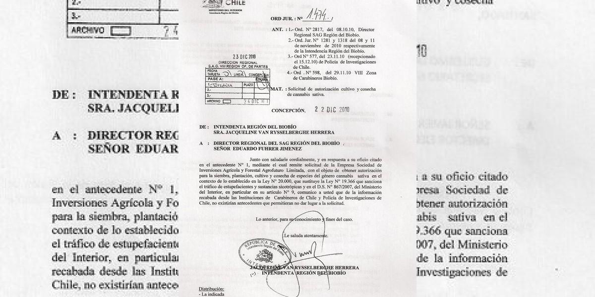 Documento: Van Rysselberghe habría autorizado plantación de marihuana en el Biobío