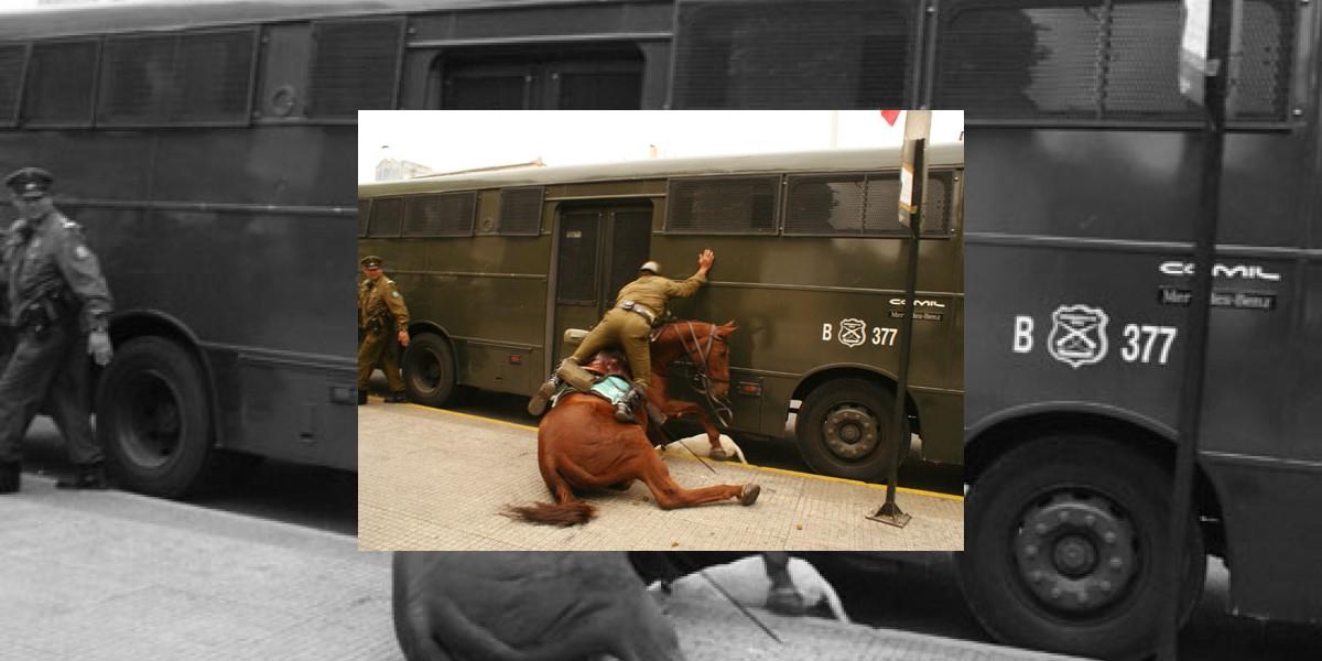 Con heridas graves quedó caballo de Carabineros atacado por perro