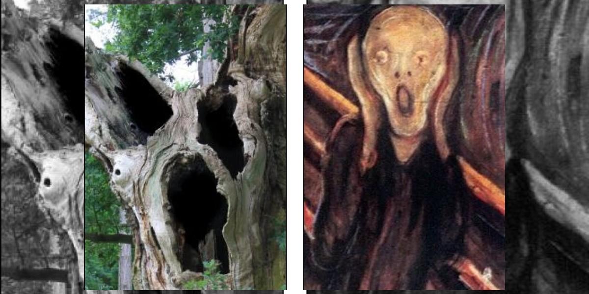 """Aseguran que nuevo árbol """"terrorífico"""" es igual a pintura """"El Grito"""""""