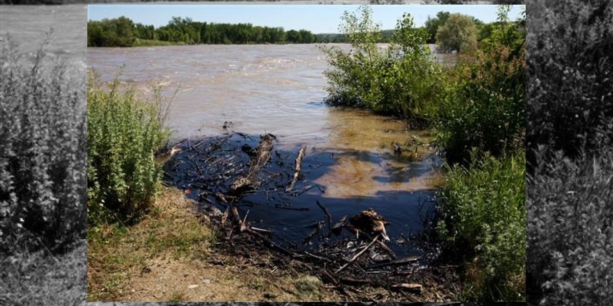 Desastre petrolero: 1.000 barriles de crudo son vertidos al río Yellowstone en EEUU