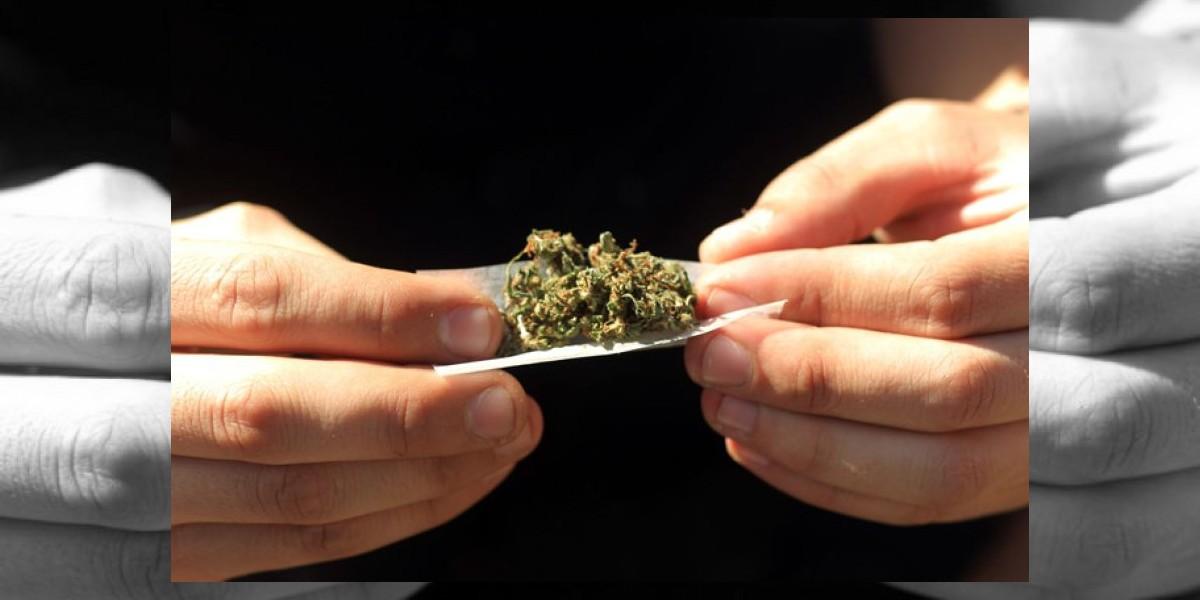 Estudio dice que los niños más inteligentes son más propensos a consumir drogas