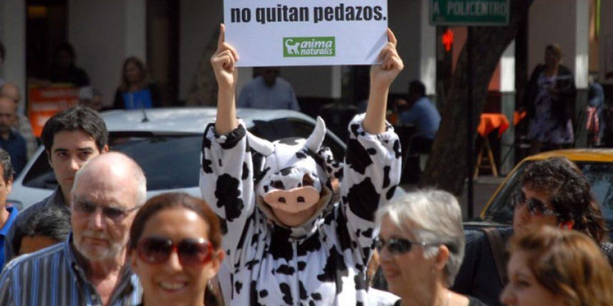 """Con intervención urbana se celebró el  """"Día mundial sin carne"""""""