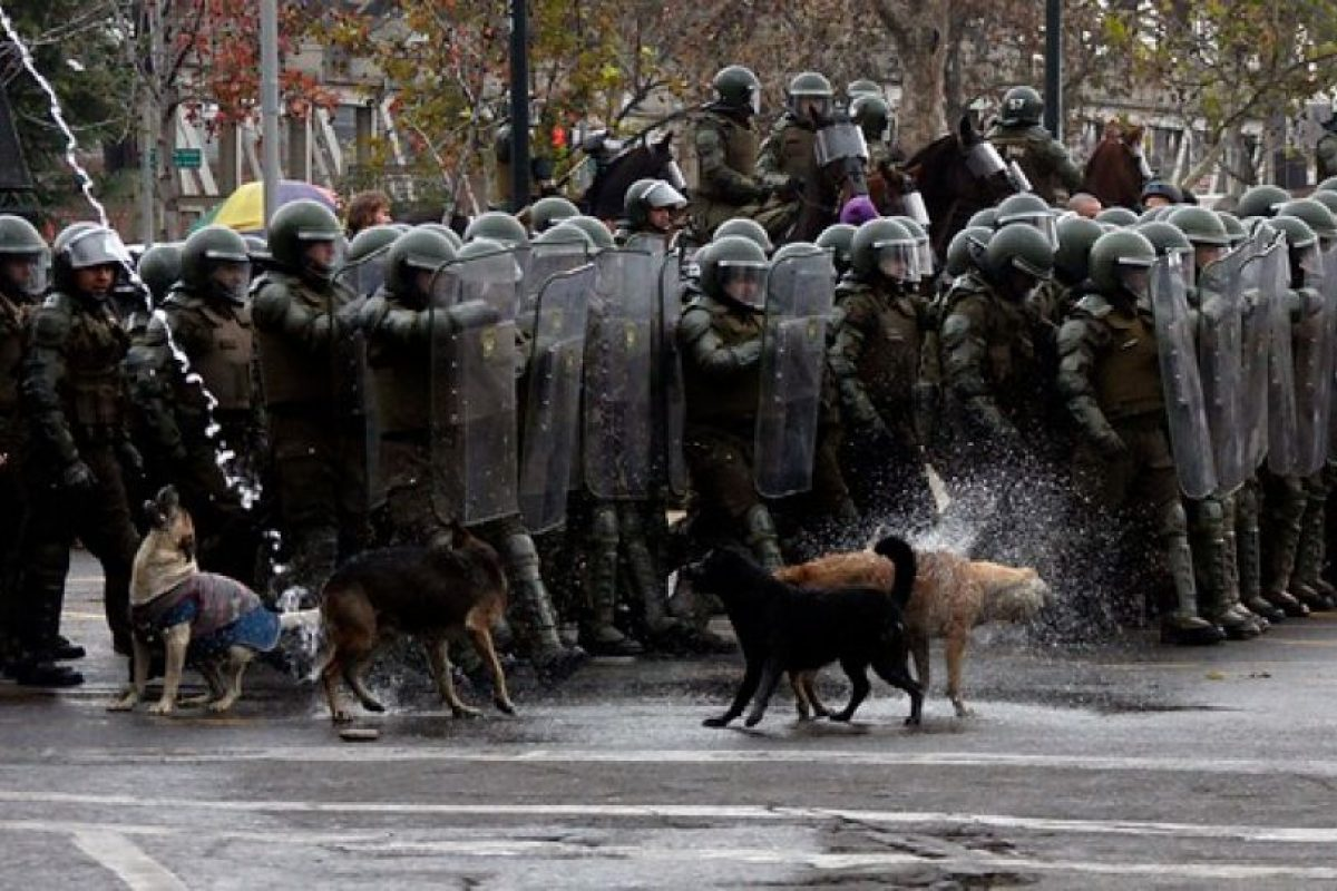 Foto:FOTO: FRANCISCO SAAVEDRA / AGENCIAUNO. Imagen Por: