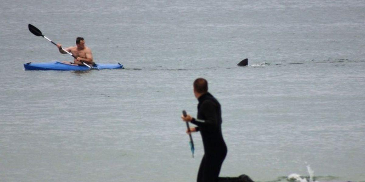 [FOTOS] El infartante encuentro de un hombre con un tiburón