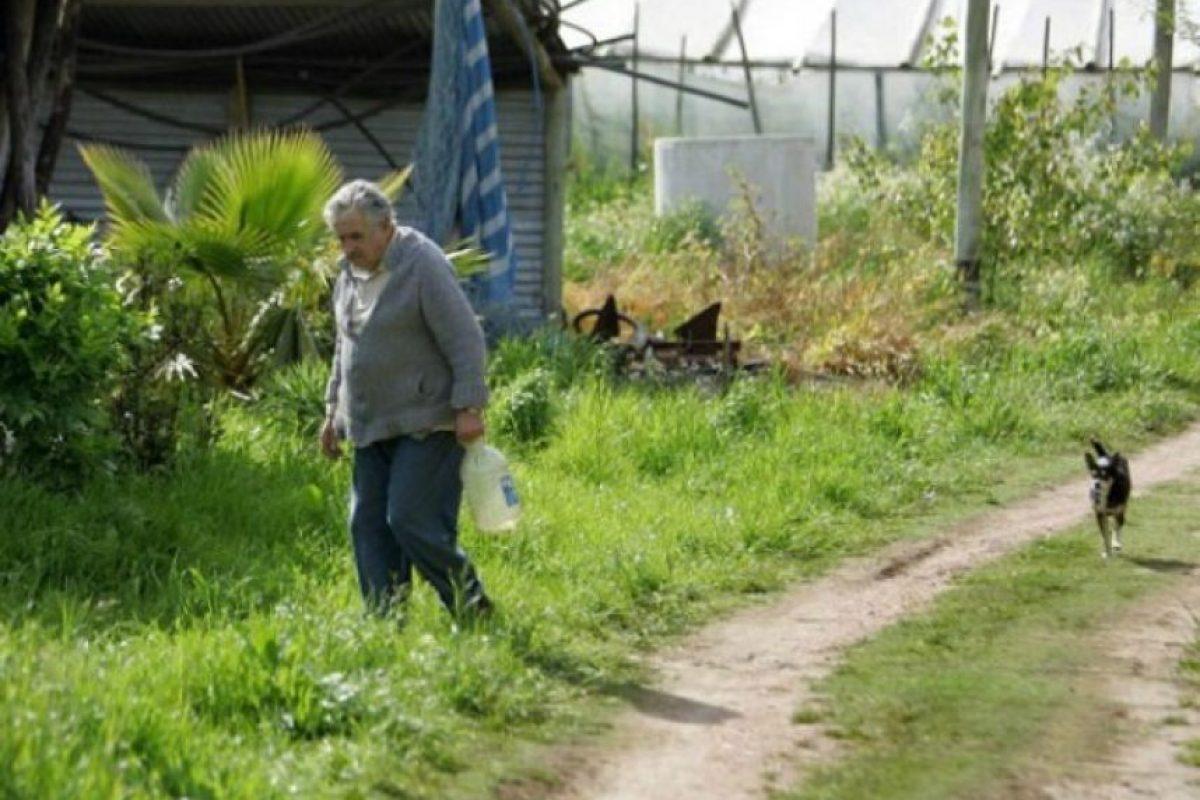 Esta es la entrada al hogar del presidente uruguayo Pepe Mujica. El Mandatario se ha caracterizado por su atípica forma de vivir, lejos de los lujos y la ostentación. En la imagen, Mujica se dirige a buscar agua a un pozo, tal como lo haría cualquier campesino en su campo.. Imagen Por: