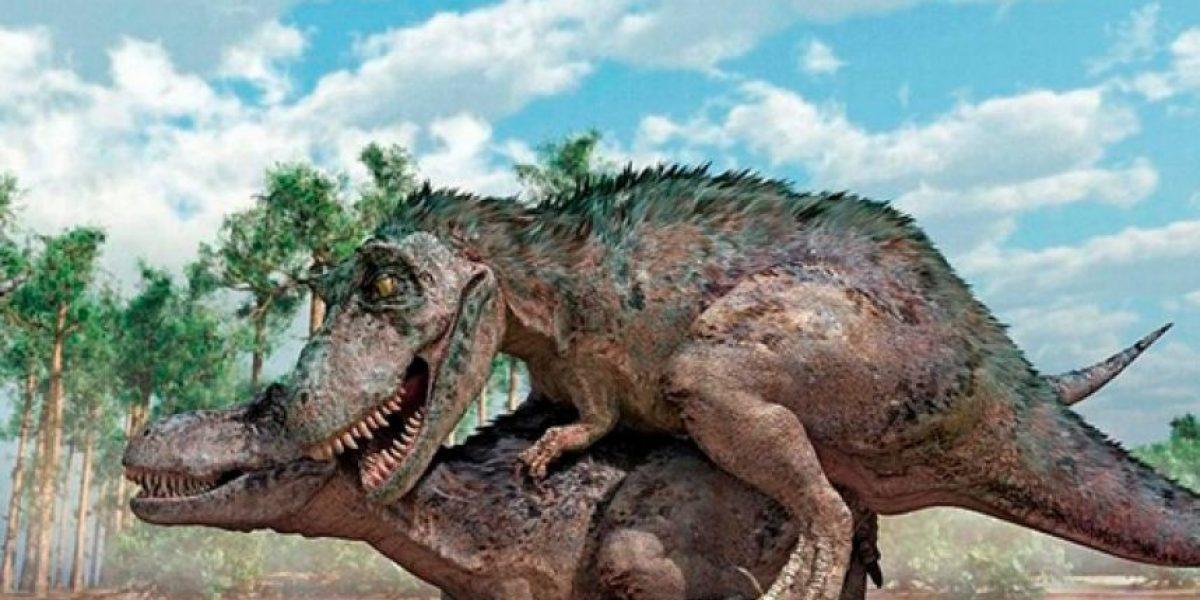[FOTOS] ¿Te imaginas cómo se apareaban los dinosaurios?