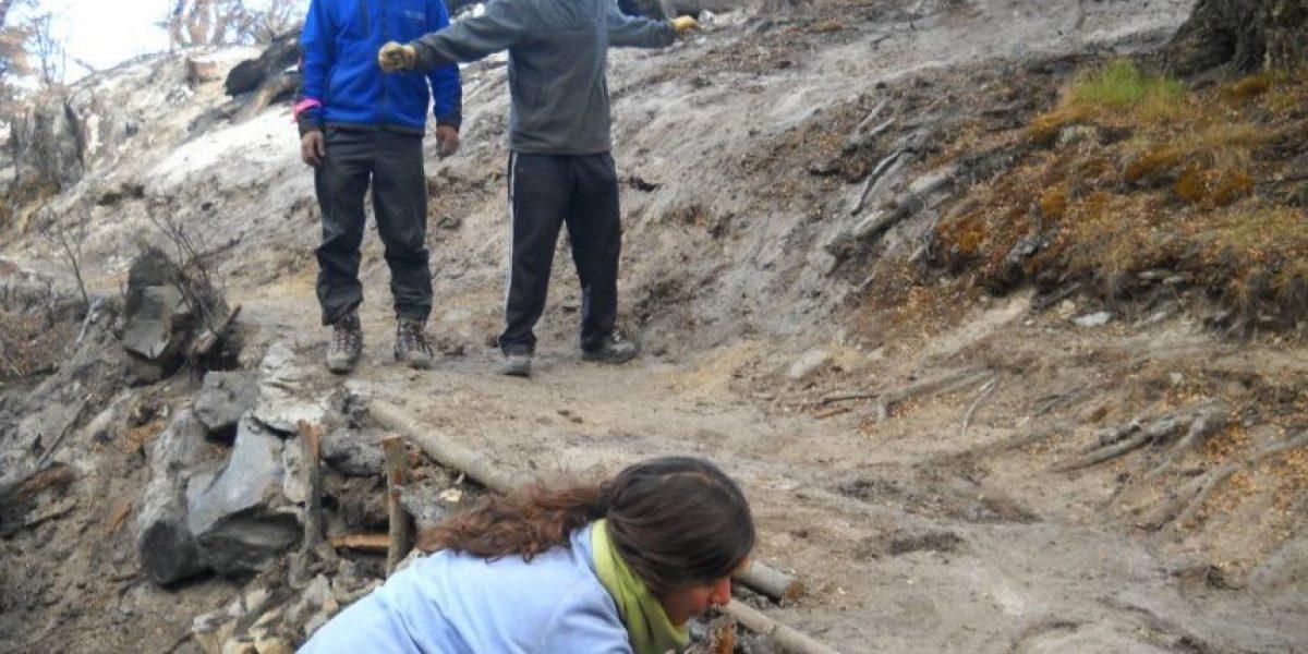 Así está quedando Torres del Paine a casi ocho meses del incendio