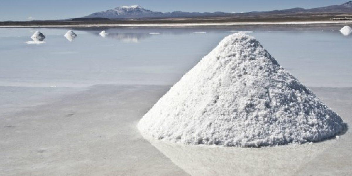 Presentarán nuevo recurso de protección contra la licitación del litio
