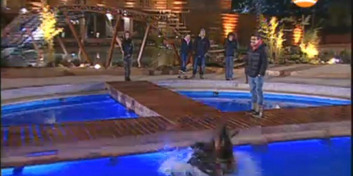 Pamela Díaz lanzó a Eugenia Lemos a la piscina en