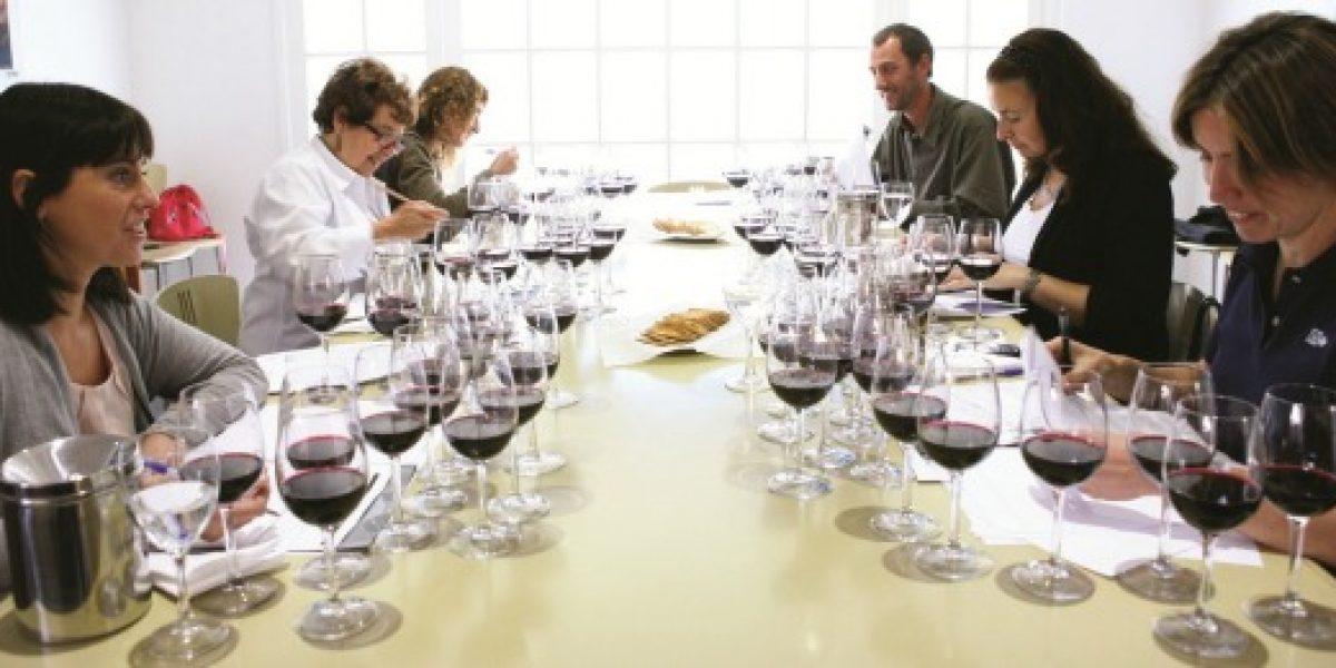 La nueva apuesta vitivinícola chilena: vino creado por ellas y ellos