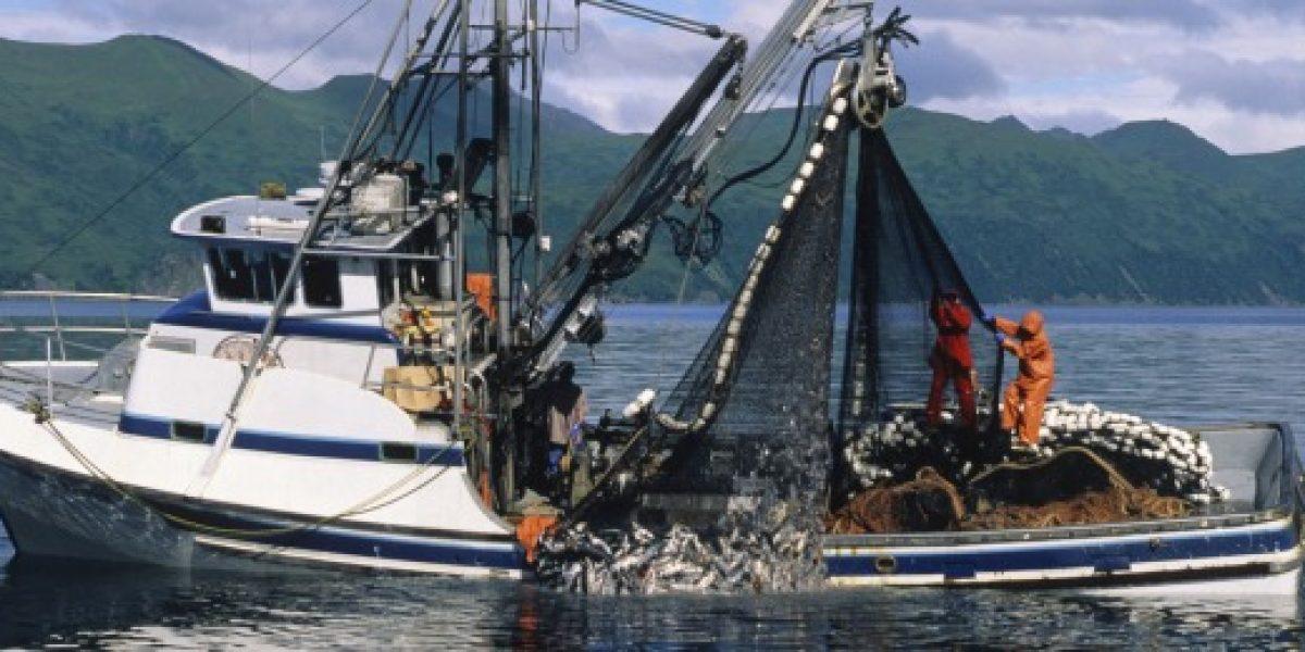 Ley General de Pesca: Diputados aprueban informe de Comisión Mixta