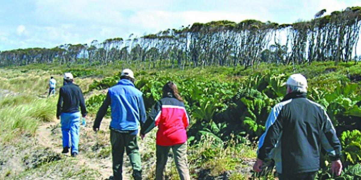 Parque Tantauco: el territorio más austral de Chiloé