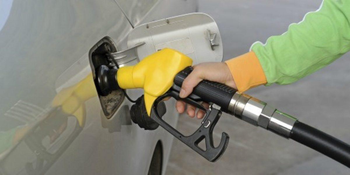 Econsult: Precio promedio de las bencinas aumentaría $2 por litro la próxima semana