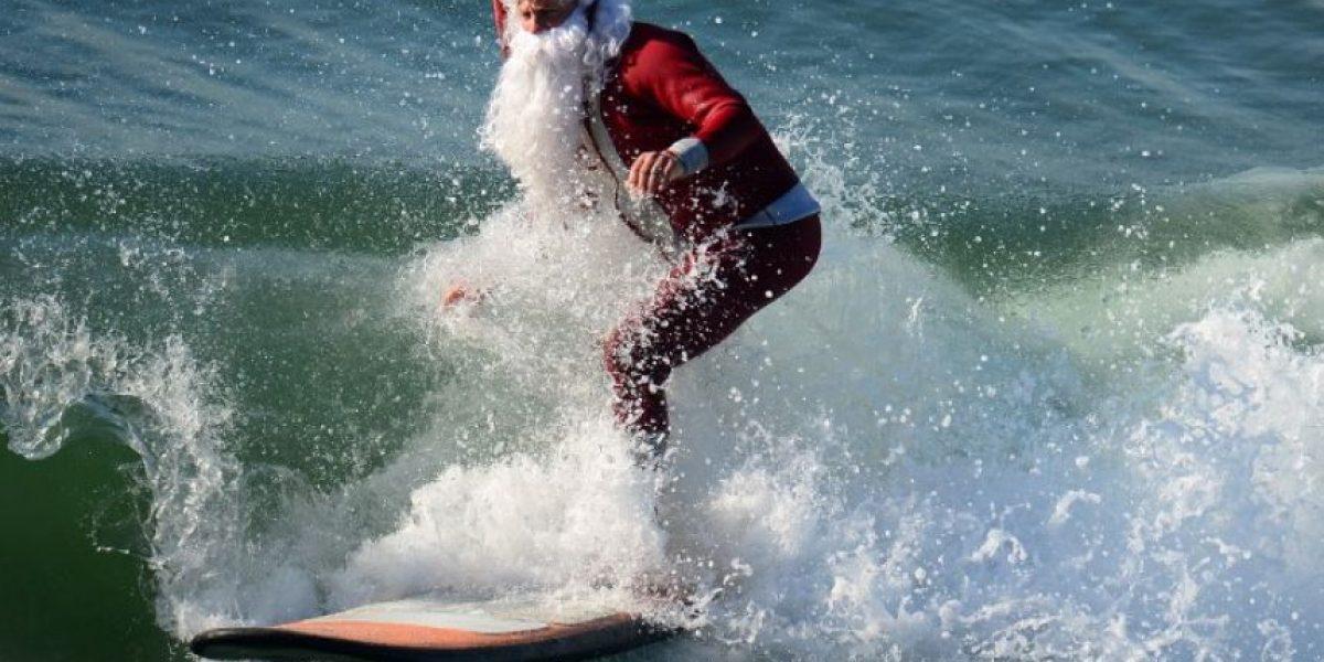 En elefante y surfeando llega el