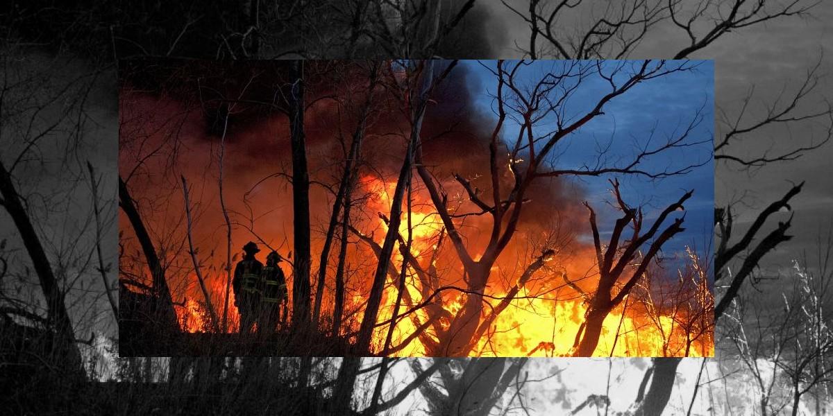 Brutal venganza: Trabajadores queman vivos a sus jefes por despedirlos