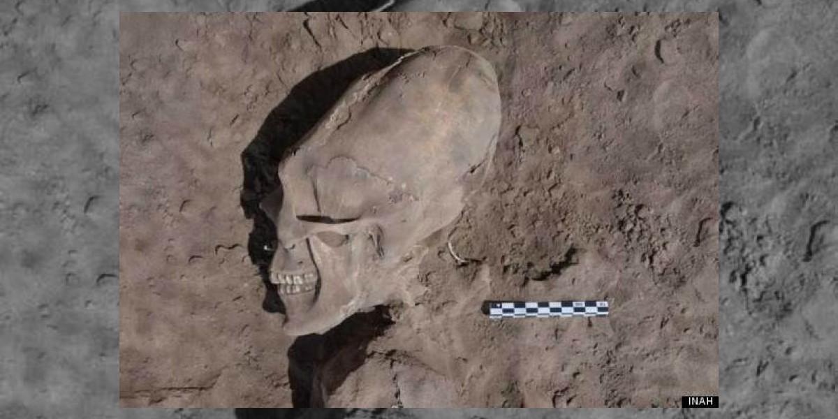 Cráneos con forma de
