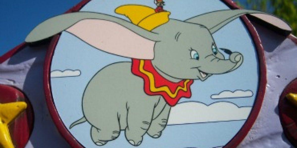 En esta ciudad hay señales que alertan de cerdos y elefantes voladores