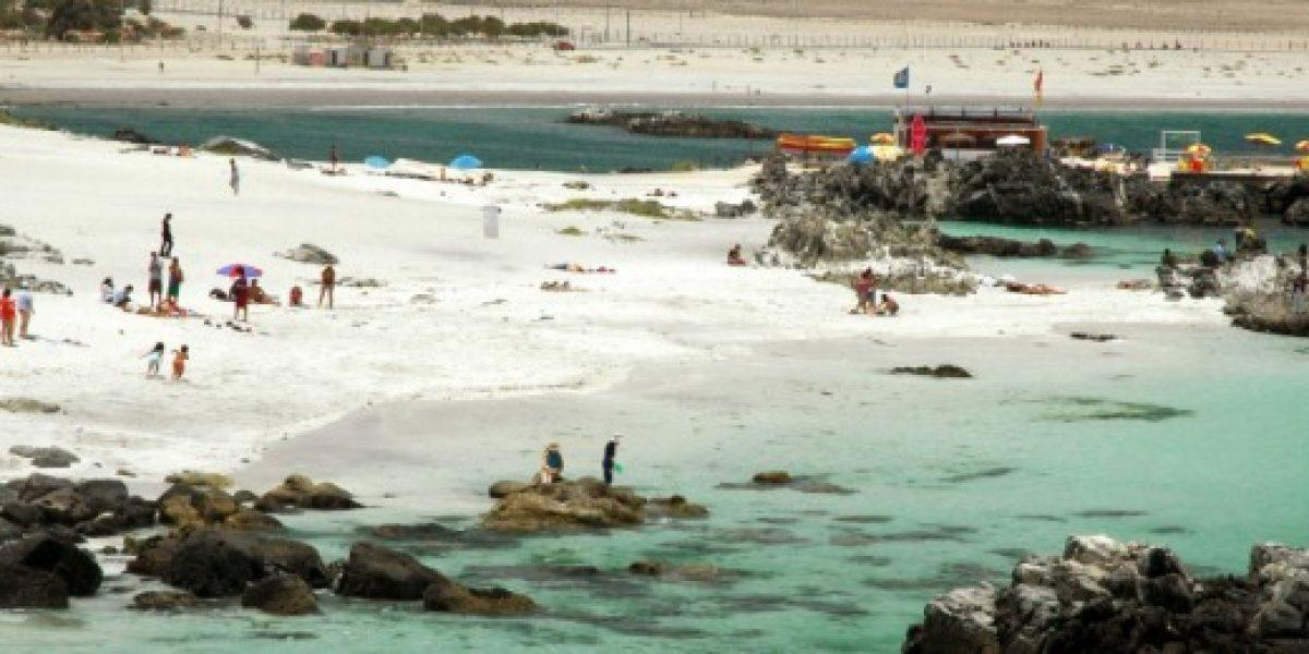 Sernatur: ocupación turística bordea el 80% en más de la mitad del país durante febrero