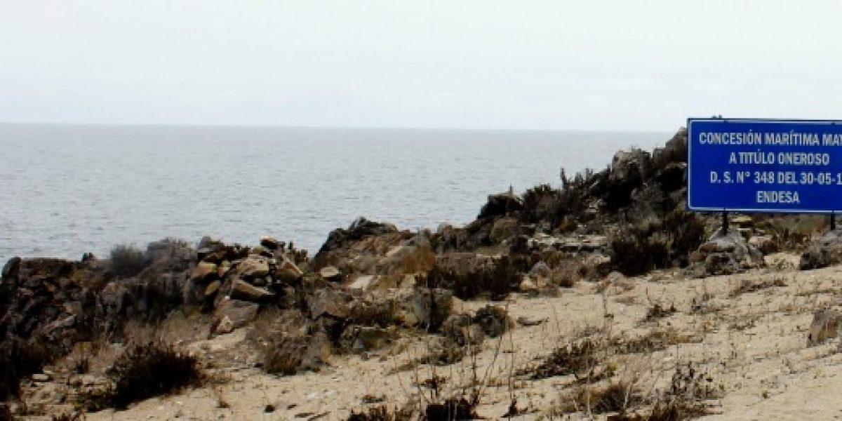 Justicia paraliza proyecto Punta Alcalde y Endesa asegura que decisión