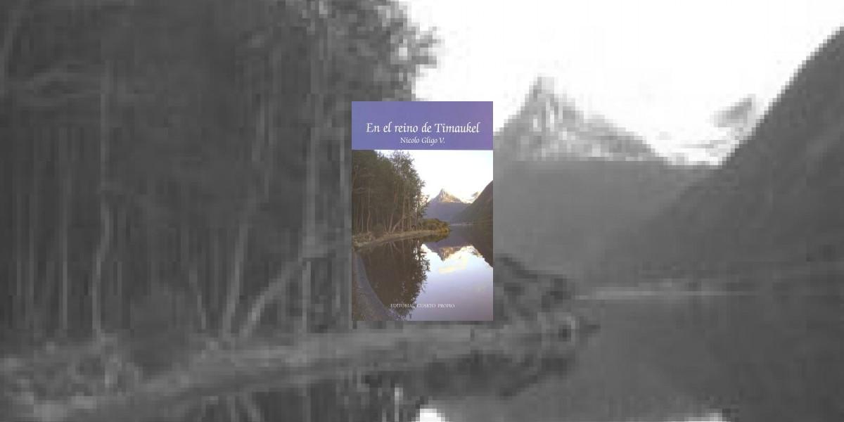 Columna de libros: En el reino de Timaukel, la tesis está primero
