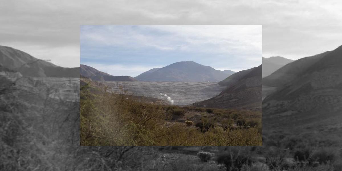 Laguna de desechos mineros se transformará en bosque nativo