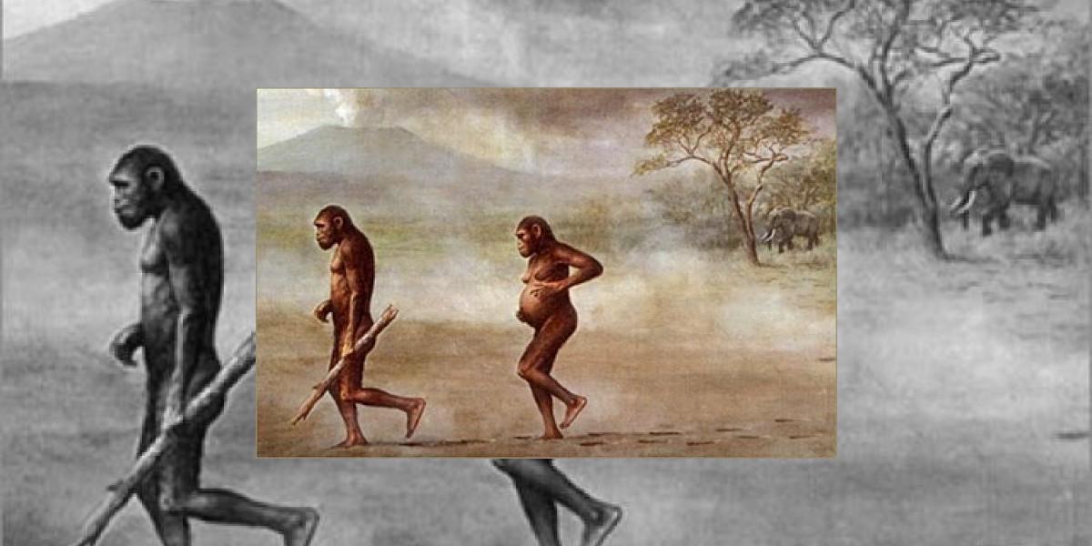 El ser humano se volvió bípedo por rocas escarpadas de África