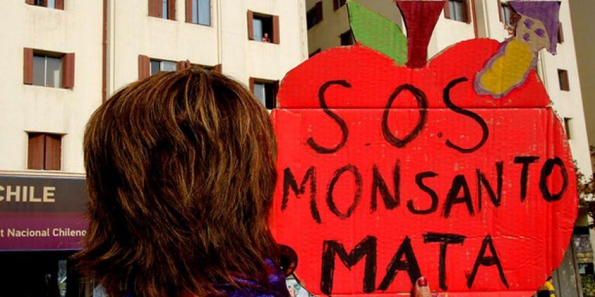 [FOTOS]: Marcha en contra de los transgénicos se tomó Santiago