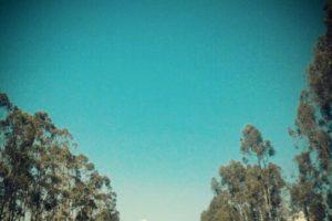 Camino hacia algarrobo. Imagen Por: