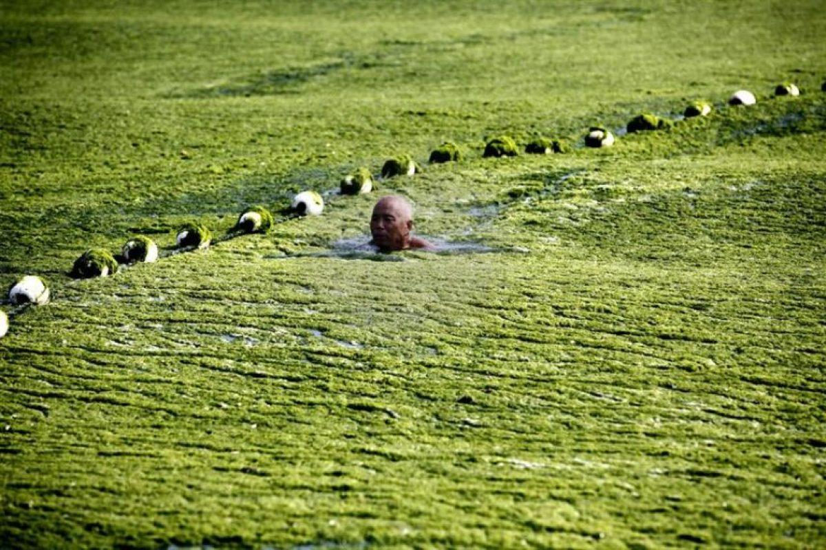Una playa quedó cubierta de algas en la ciudad costera oriental china de Qingdao, en la provincia de Shandong, el pasado 3 de julio. La epidemia de algas de la especie enteromorpha prolifera ha teñido de verde las aguas afectando al turismo y al ecosistema marino. Foto:EFE. Imagen Por: