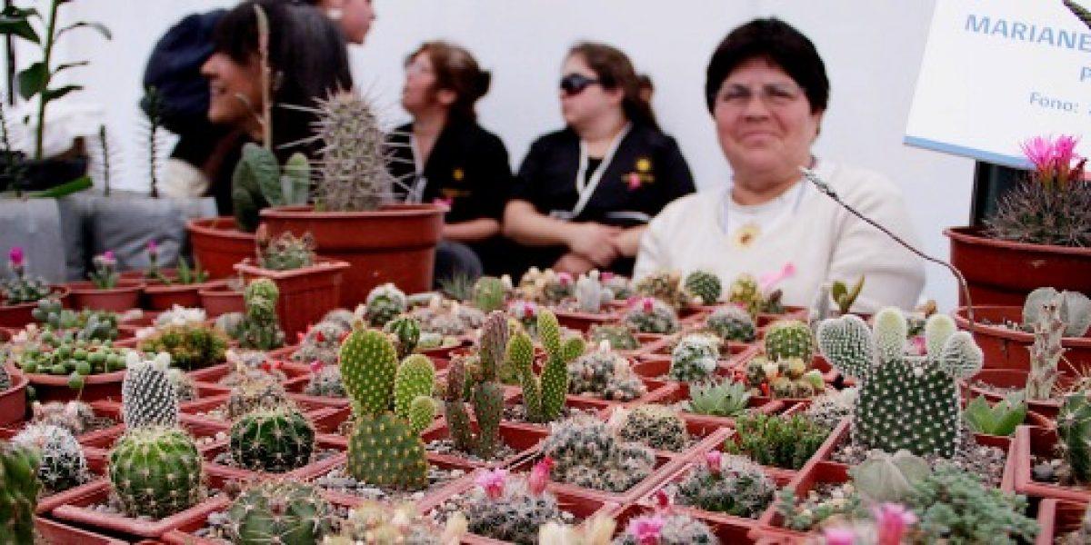 Estudio: Chile es el mejor país de Latinoamérica para las mujeres emprendedoras