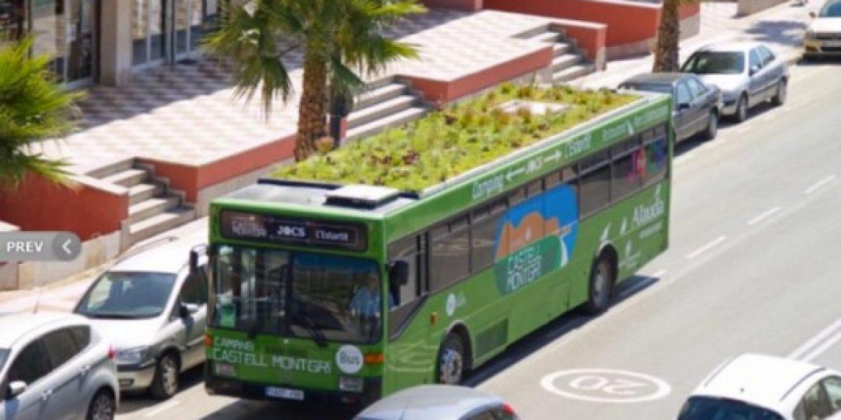 Los buses que transportan un jardín