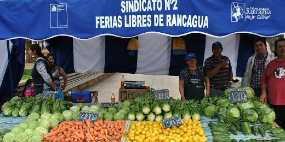 Renuevan feria libre de Rancagua gracias a plan de modernización