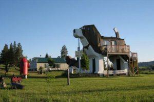 Dog Bark Park Inn en Estados Unidos. Un bed & breakfast con forma de Beagle Foto:metrotravel.mx/. Imagen Por:
