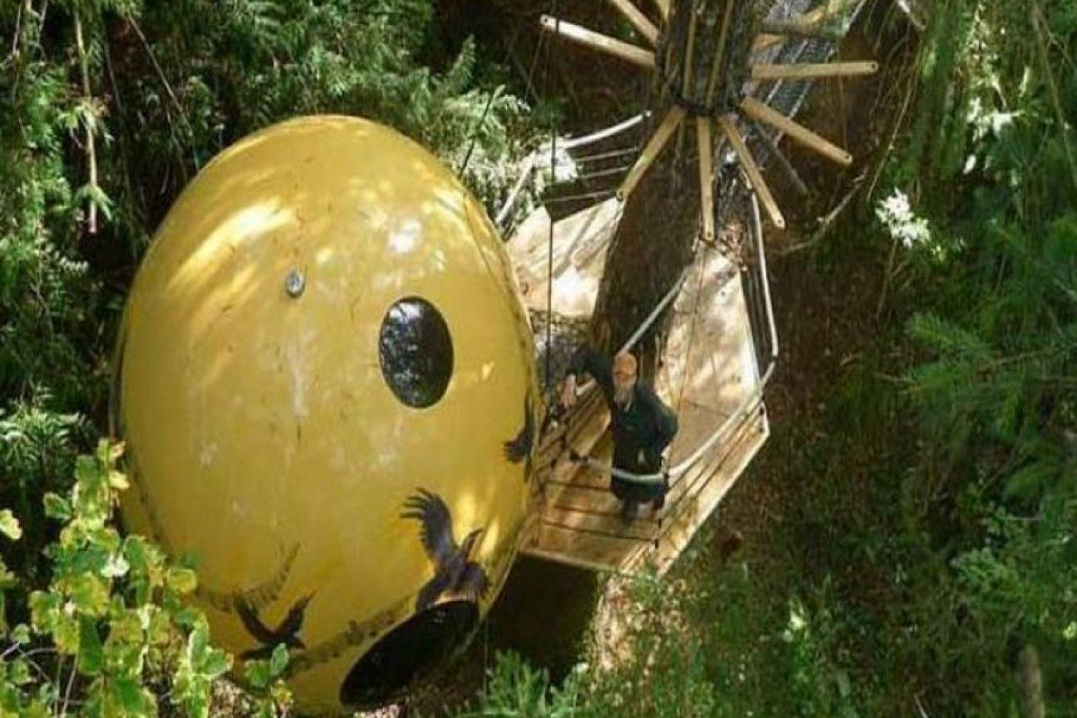 Free Spirit Spheres en Canadá. Son esferas ancladas en los altos árboles de los bosques de Vancouver. Foto:metrotravel.mx/. Imagen Por:
