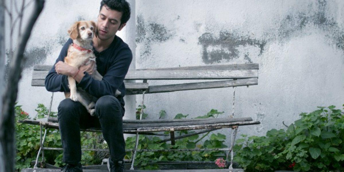 Gepe hace y dona canción para ayudar a perros callejeros