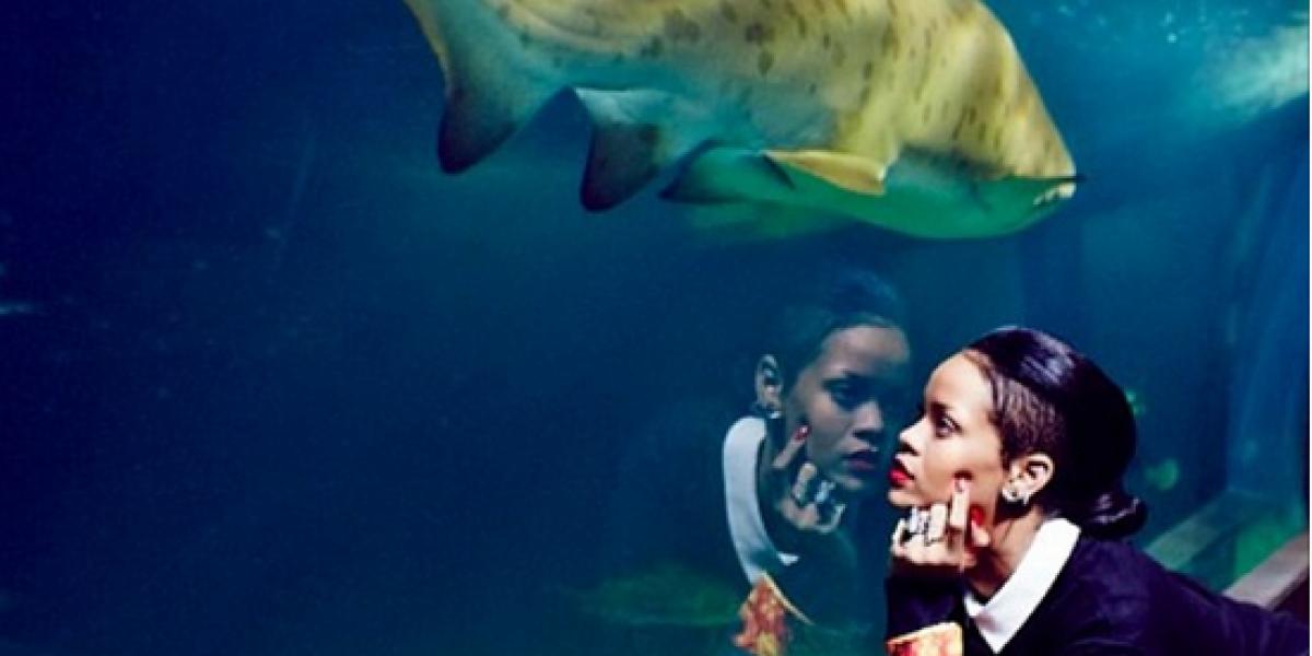 Rihanna registra en Instagram su alocado safari por Sudáfrica