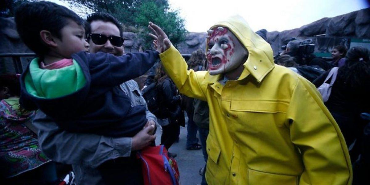 [FOTOS] Animales del terror: Así se celebra Halloween en el Zoológico Metropolitano
