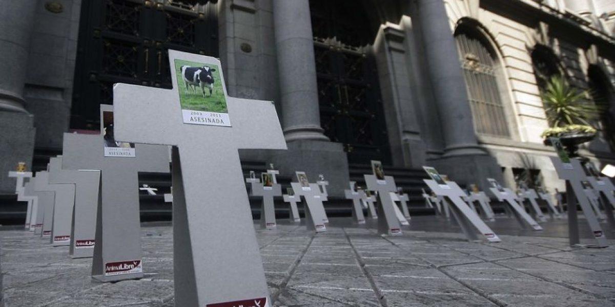 Con cruces en medio del paseo Ahumada conmemoraron el