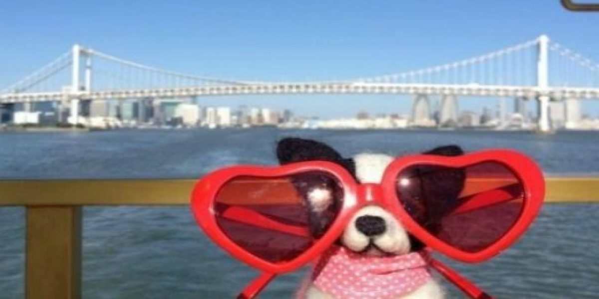 Curiosidades: existe una agencia de viajes... para peluches