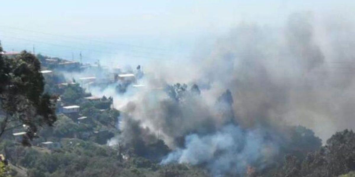 Agresivo incendio afecta a viviendas del sector alto de Viña del Mar