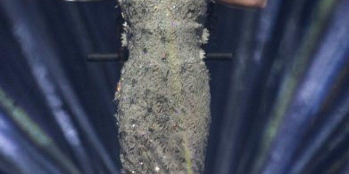 Las espectaculares fotos del concierto de Sara Brightman