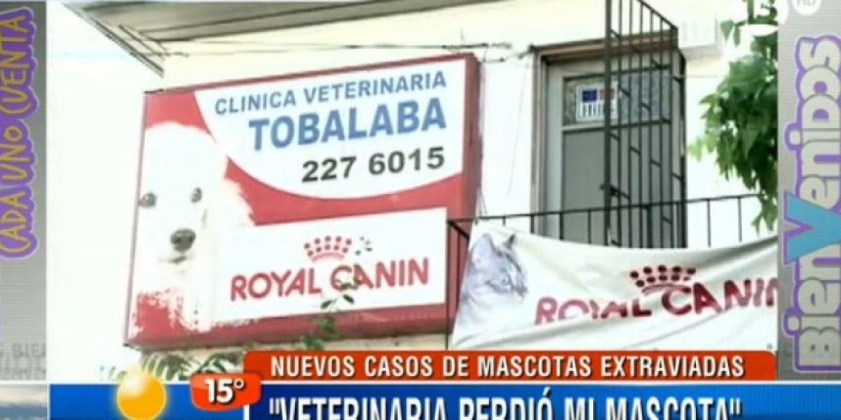 [FOTOS] Clínica veterinaria es acusada de perder mascotas