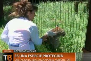 Foto:Captura Canal 13. Imagen Por: